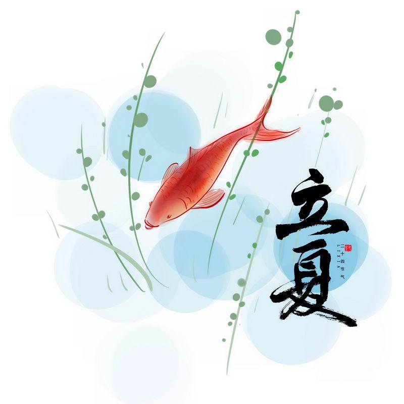 24节气之立夏手绘金鱼和艺术字体5658421图片素材 节日素材-第1张
