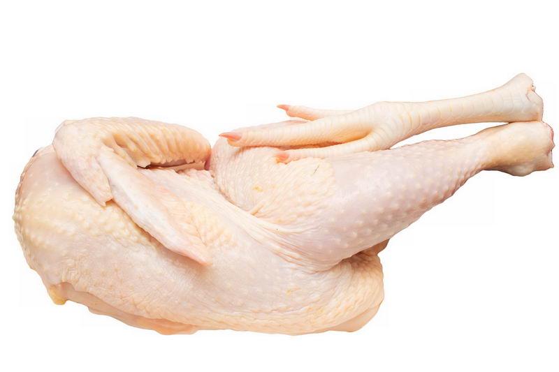 半只生鸡肉鸡大腿鸡爪鸡脚美味食材3084844png图片免抠素材 生活素材-第1张