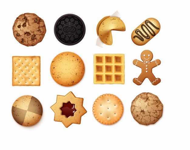12款各种形状和口味的曲奇饼干3041368矢量图片免抠素材