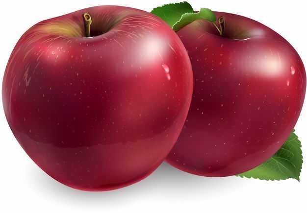 2颗红苹果红富士苹果美味水果6593793矢量图片免抠素材