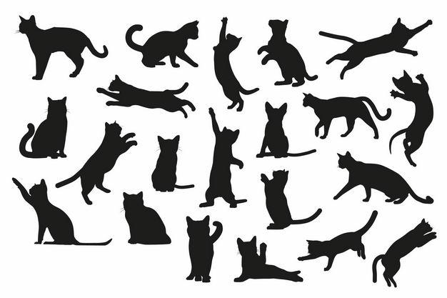 各种猫咪动作动物剪影2695754矢量图片免抠素材 生物自然-第1张