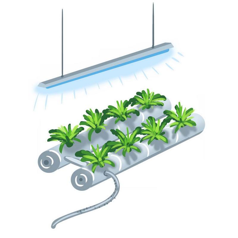 无土栽培技术新农业科技创新手绘插画2637430图片素材 工业农业-第1张