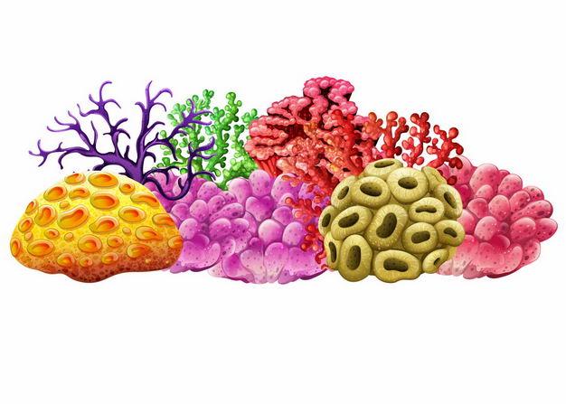 各种漂亮的珊瑚虫珊瑚礁海洋动物7124226矢量图片免抠素材 生物自然-第1张