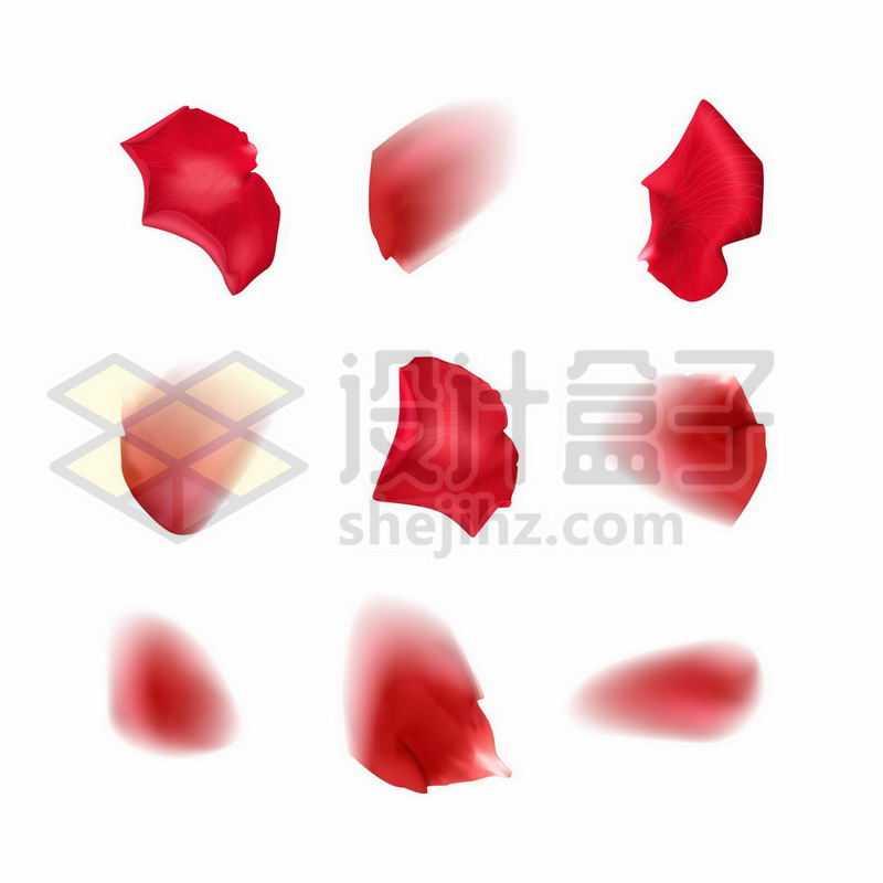9款玫瑰花月季花红色花瓣5228287矢量图片免抠素材