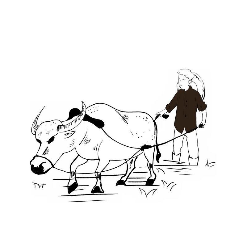 农民驾驭耕牛正在耕田种田手绘插画风格4998205免抠图片素材 工业农业-第1张