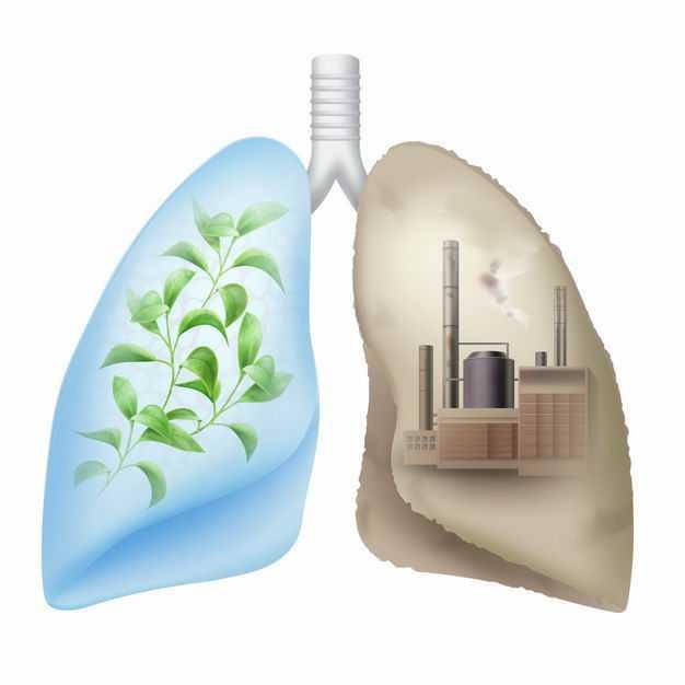 新鲜空气和污染空气对人体肺部的健康影响5744090矢量图片免抠素材