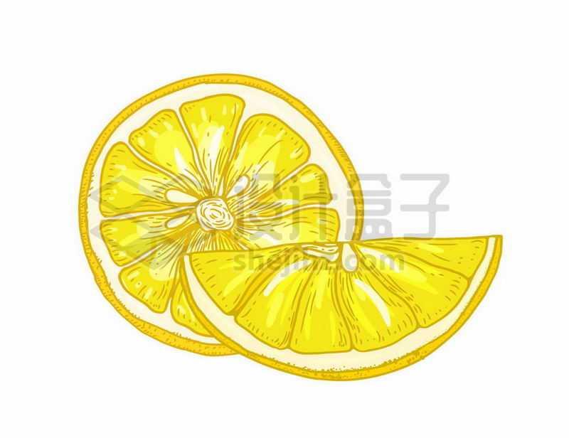 切开的橙子橘子美味水果手绘插画4563032矢量图片免抠素材