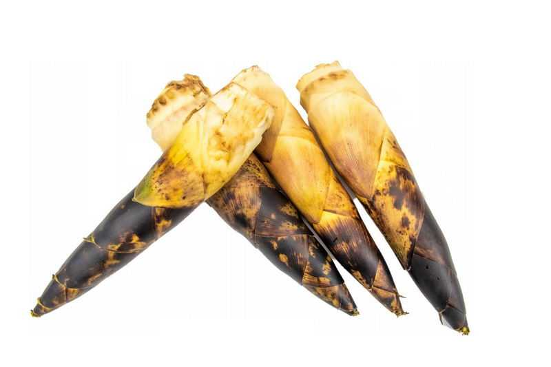 4根毛竹笋春笋美味蔬菜1761965png图片免抠素材