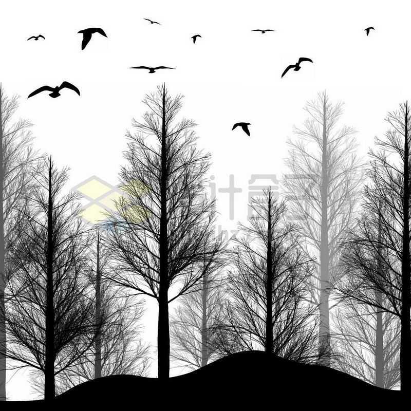 茂密的森林和飞鸟剪影1181296免抠图片素材