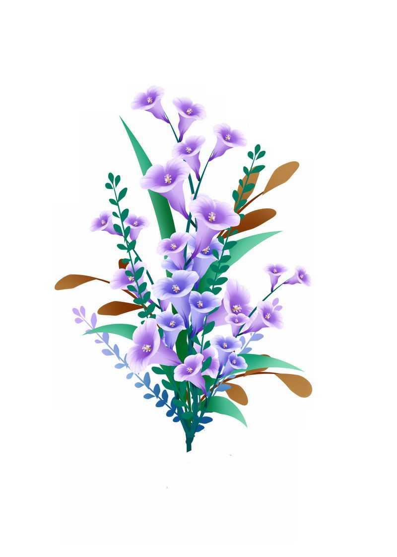 盛开的紫色花朵喇叭花鲜花花束4864030免抠图片素材