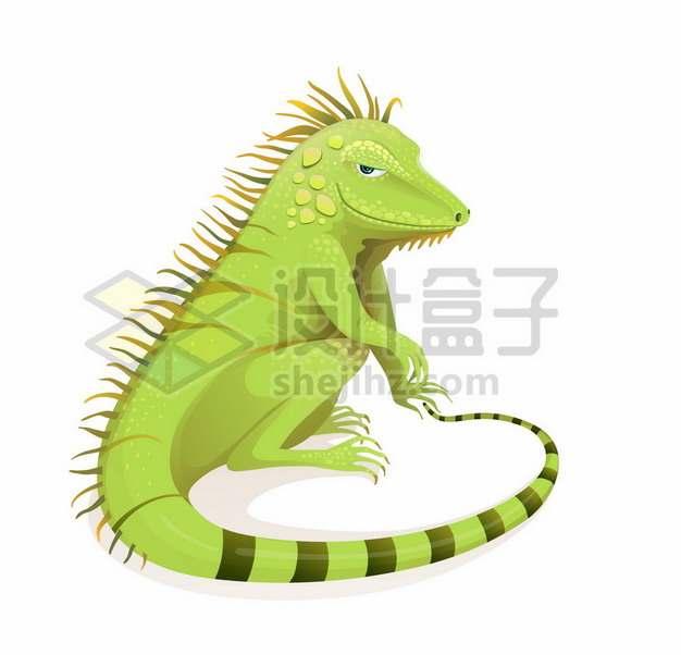 绿色蜥蜴绿鬣蜥爬行动物6396045矢量图片免抠素材