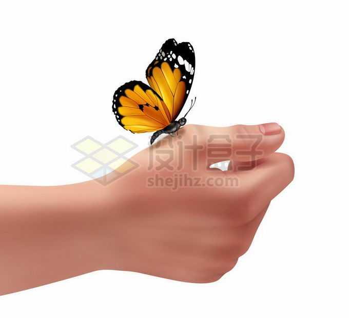 一只彩色蝴蝶停留在手上人与自然的和谐7616241矢量图片免抠素材