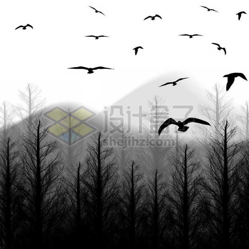 淡淡的远山和近处的大森林飞鸟剪影6926683免抠图片素材