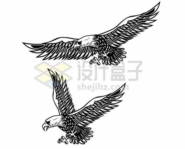 黑色线条展翅的雄鹰老鹰9139729矢量图片免抠素材