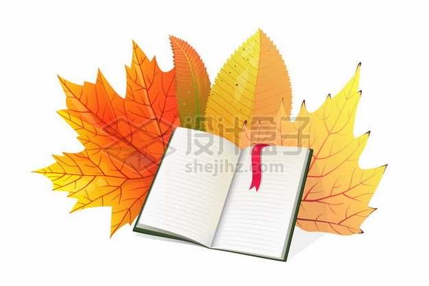 秋天金黄色枫叶树叶和打开的书本2393668矢量图片免抠素材