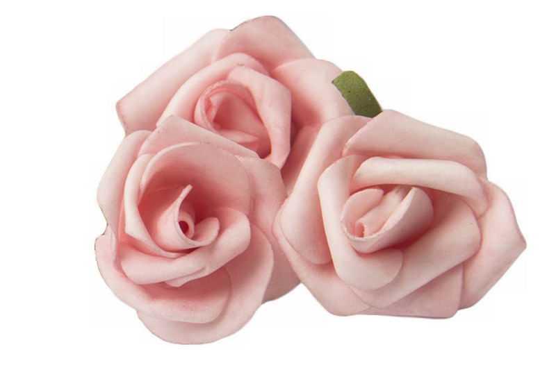 3朵盛开的粉色玫瑰花美丽花朵5801274png免抠图片素材