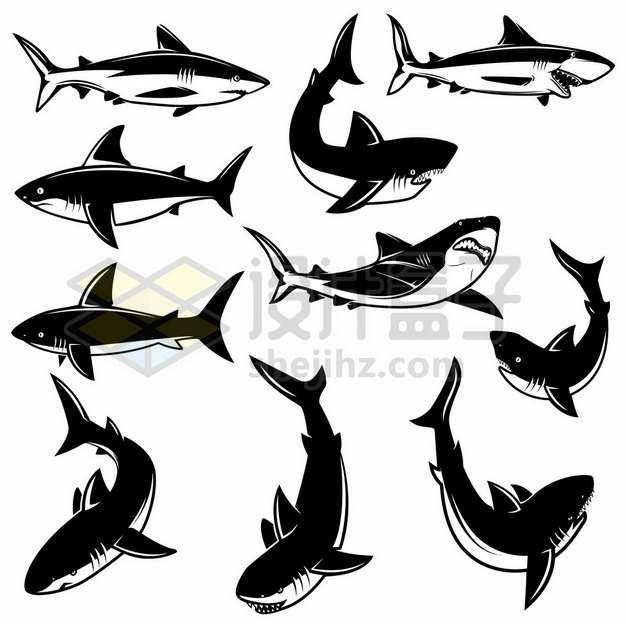 各种姿势的黑色漫画风格鲨鱼大白鲨凶猛海洋霸主1882626矢量图片免抠素材