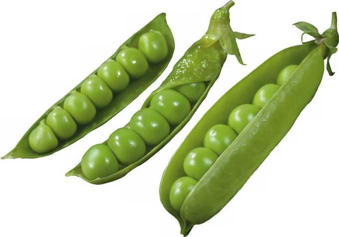 3个剥开的豌豆荚青豆子美味蔬菜7003153png免抠图片素材
