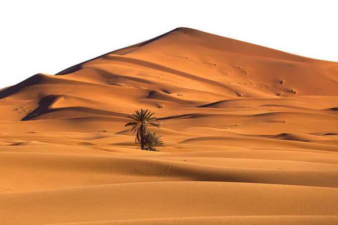 撒哈拉沙漠中高耸的沙丘景观风景2964209png免抠图片素材
