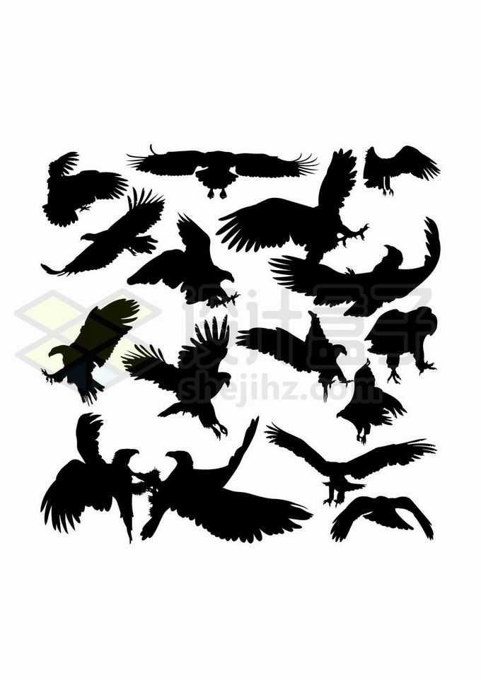 各种老鹰金雕野生动物剪影6345675矢量图片免抠素材