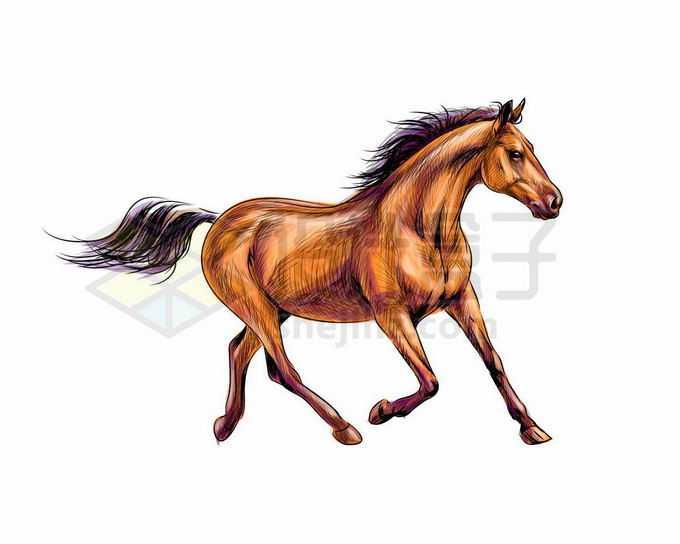 慢速奔跑着的枣红色骏马写实风格水彩插画2489713矢量图片免抠素材免费下载
