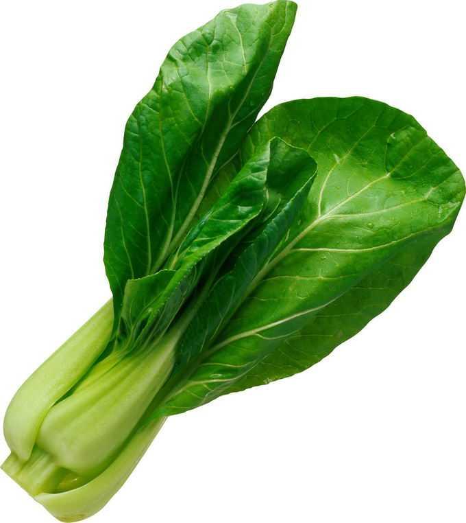 一颗青菜油麦菜美味蔬菜2923952png免抠图片素材
