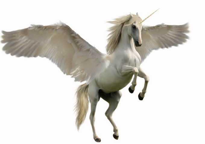 长着翅膀的白马飞马独角兽传说中的神话生物神兽4414966png免抠图片素材