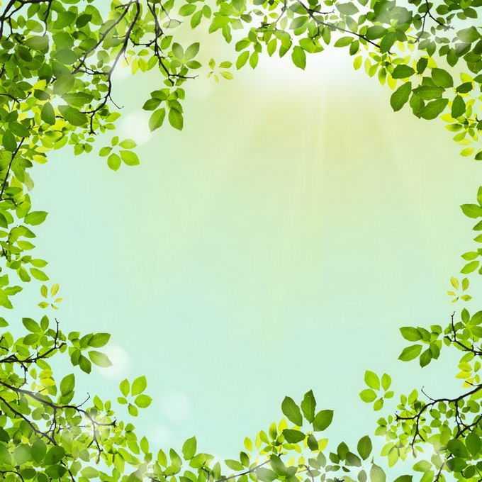 夏天夏日中午阳光照射下的树冠绿色树叶装饰边框2207164免抠图片素材