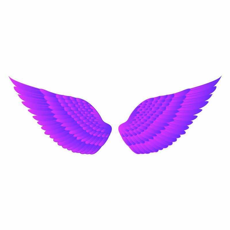 一堆紫红色的羽毛翅膀9267682矢量图片免抠素材
