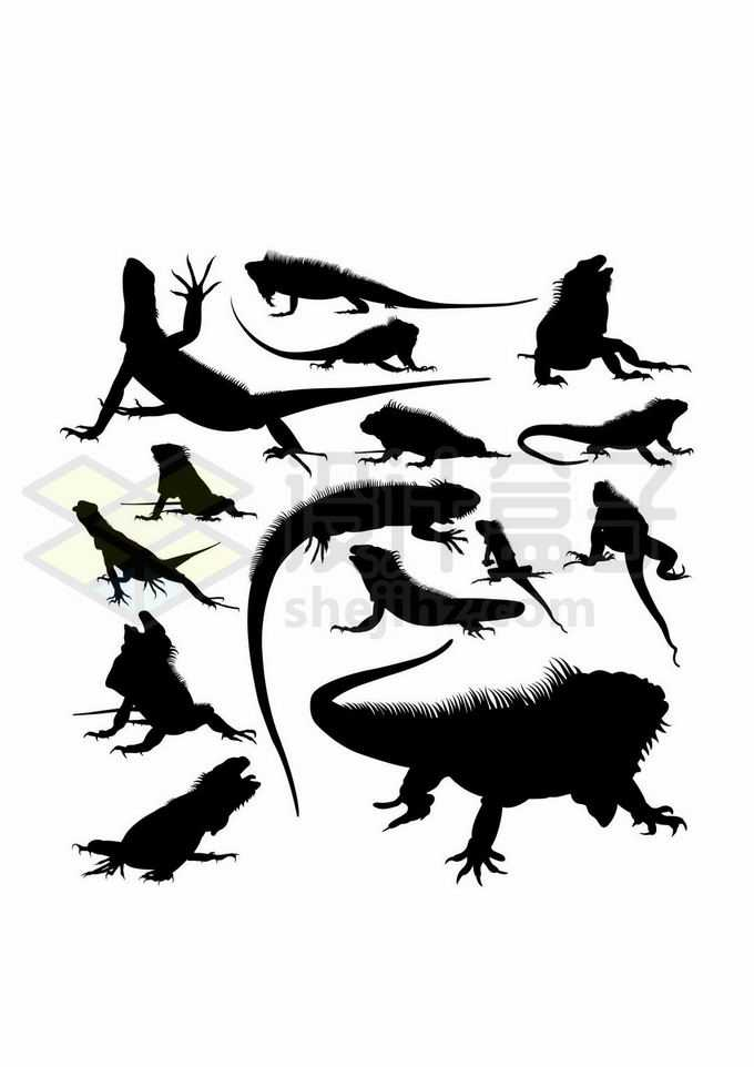 各种蜥蜴鬣蜥小型爬行动物剪影7063040矢量图片免抠素材