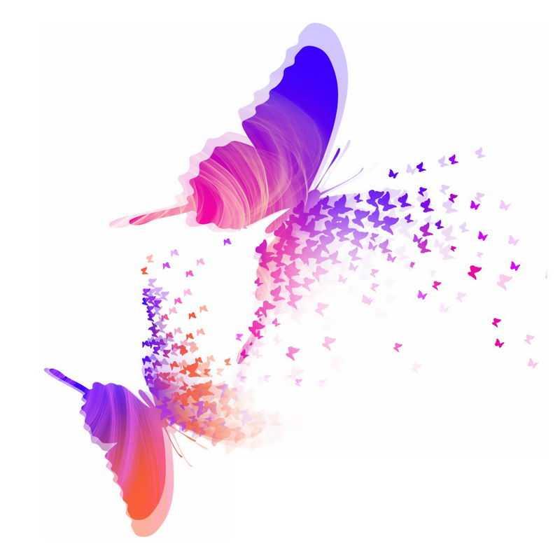 2只翩翩起舞的红色紫色蝴蝶抽象插画3252051免抠图片素材