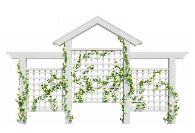 白色花园廊架花架上的绿色藤蔓绿植9164366免抠图片素材