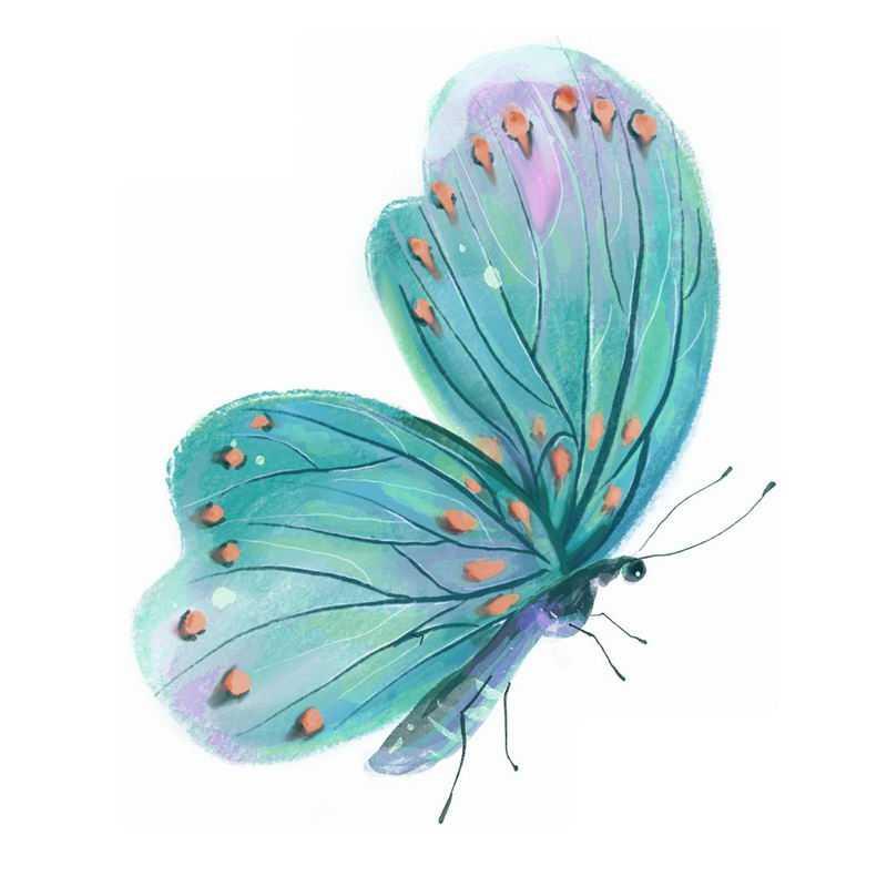 绿色的蝴蝶水彩画插画8676299免抠图片素材