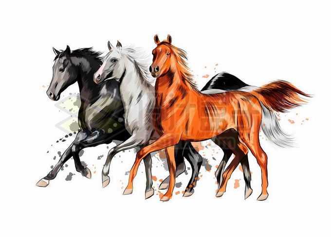 充满力量感的三匹齐头并进的骏马写实风格水彩插画7682528矢量图片免抠素材免费下载
