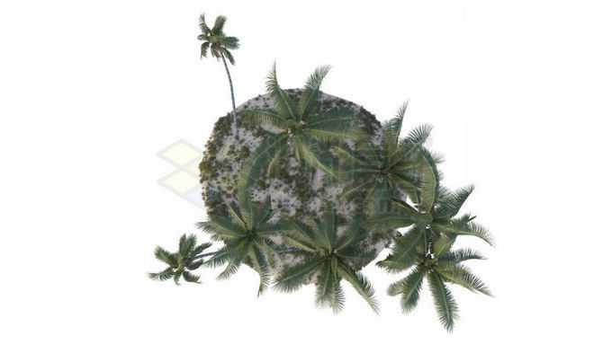 俯视视角小岛上的椰树林大海上的海岛风景8202622免抠图片素材免费下载