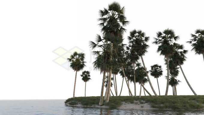 小岛沙滩上的椰树林大海上的海岛风景9268678免抠图片素材免费下载