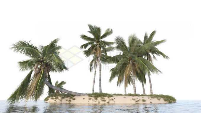 小岛上的椰树林大海上的海岛风景8148039免抠图片素材免费下载