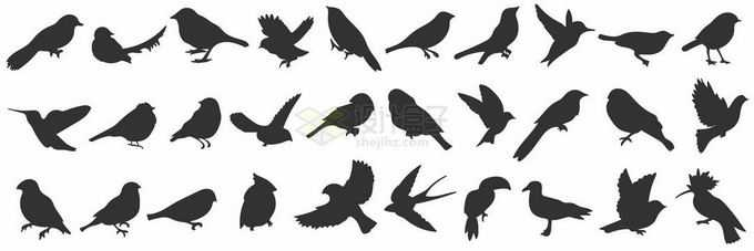 燕子麻雀乌鸦等小鸟剪影1030092矢量图片免抠素材