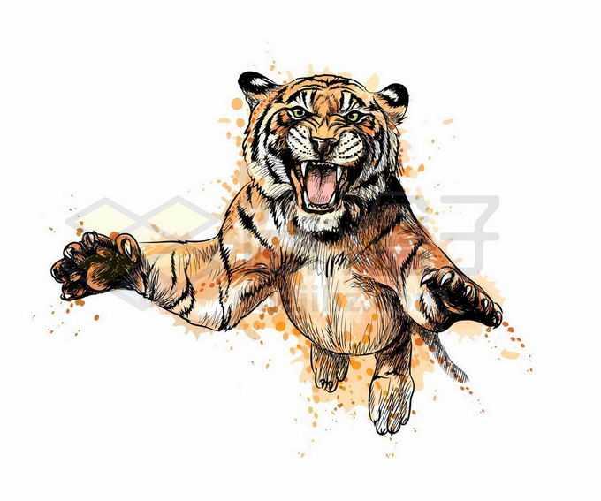 张牙舞爪扑过来的大老虎猛兽写实风格水彩插画5923013矢量图片免抠素材免费下载