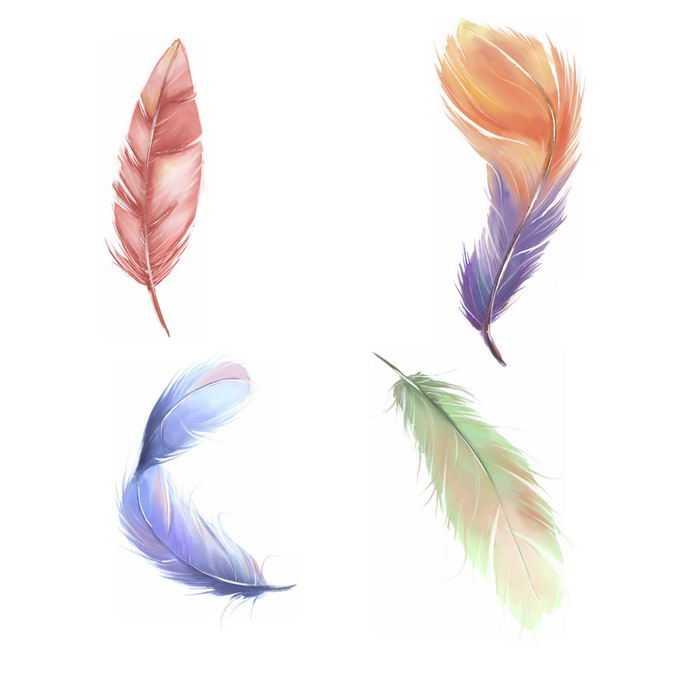 4款绚丽色彩的彩色羽毛5143723免抠图片素材