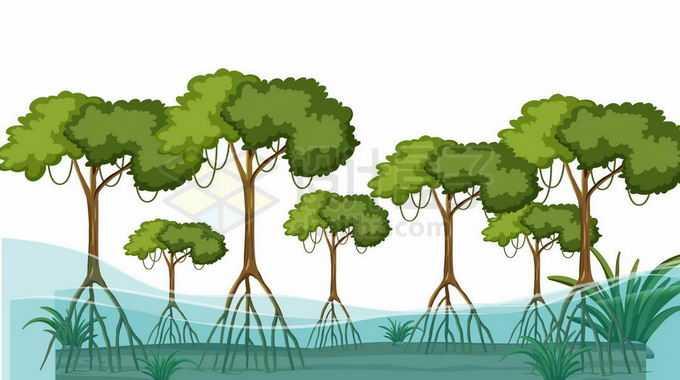 被大水淹没的红树林风景5502275矢量图片免抠素材免费下载
