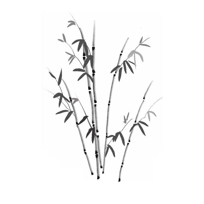 中国风水墨画风格竹子5560575图片免抠素材免费下载 生物自然-第1张