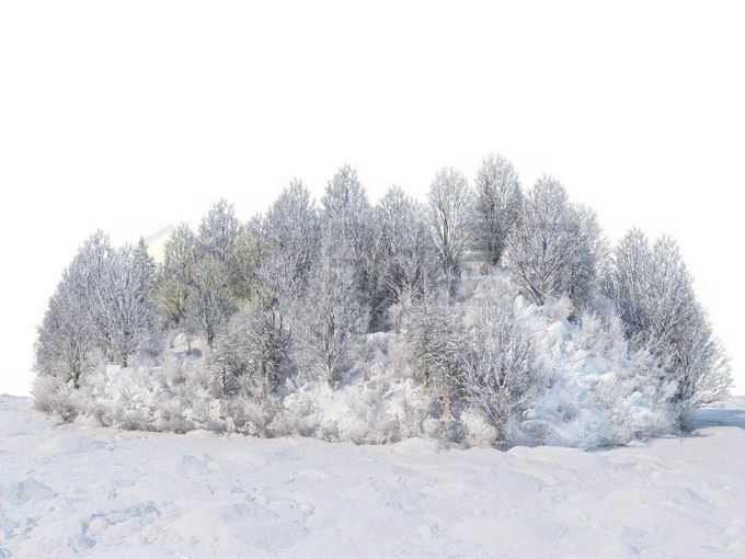 冬天被积雪覆盖的雪原上的灌木丛和树林风景6693521免抠图片素材免费下载