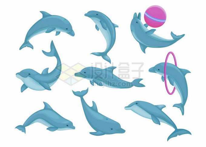 各种造型的海洋公园中表演的蓝色海豚8611417矢量图片免抠素材