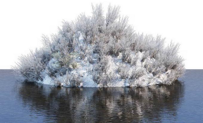 冬天被积雪覆盖的湖心小岛上的灌木丛和大树风景6089256免抠图片素材免费下载 生物自然-第1张