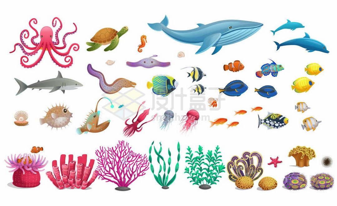 卡通章鱼海龟鲸鱼海豚鲨鱼海鳗河豚水母等海洋鱼类以及五颜六色的珊瑚4153396矢量图片免抠素材
