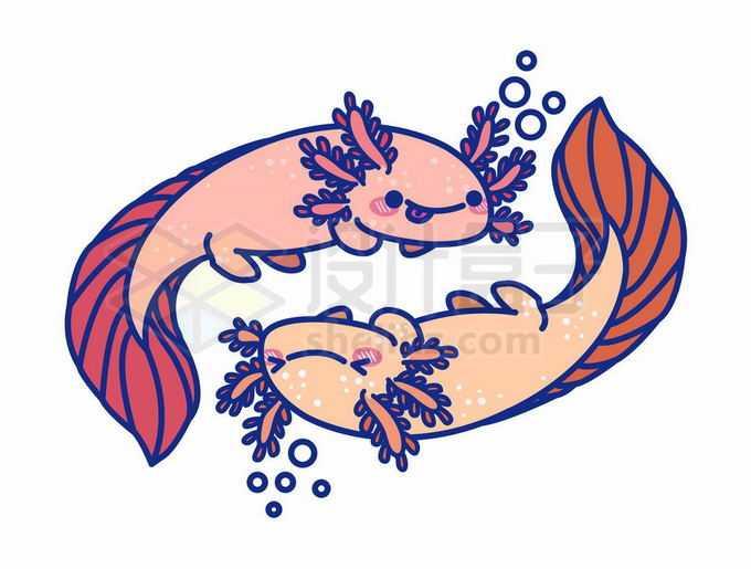 2只卡通六角恐龙美西钝口螈可爱两栖动物6530721矢量图片免抠素材免费下载