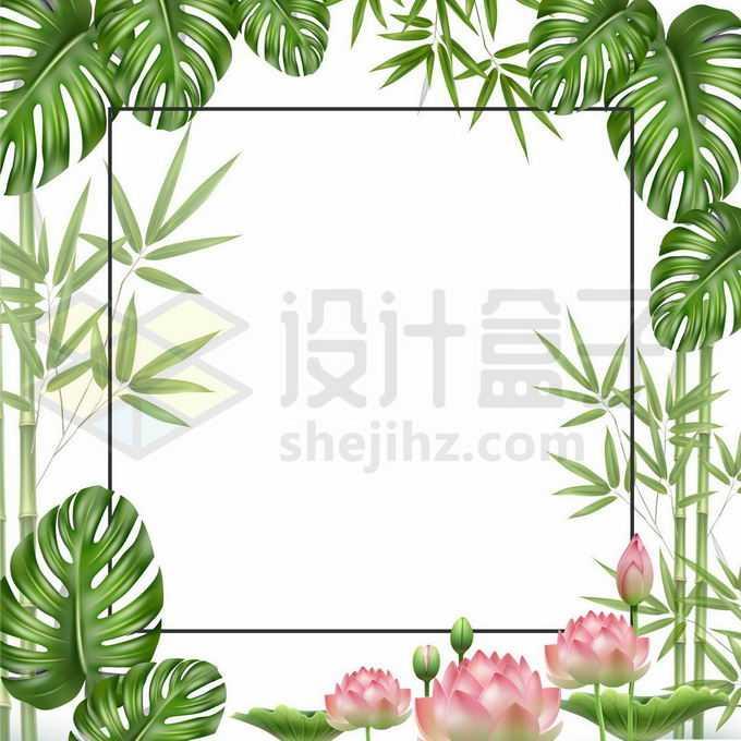 各种热带树叶竹子竹叶和荷花荷叶莲花边框装饰5930769矢量图片免抠素材免费下载