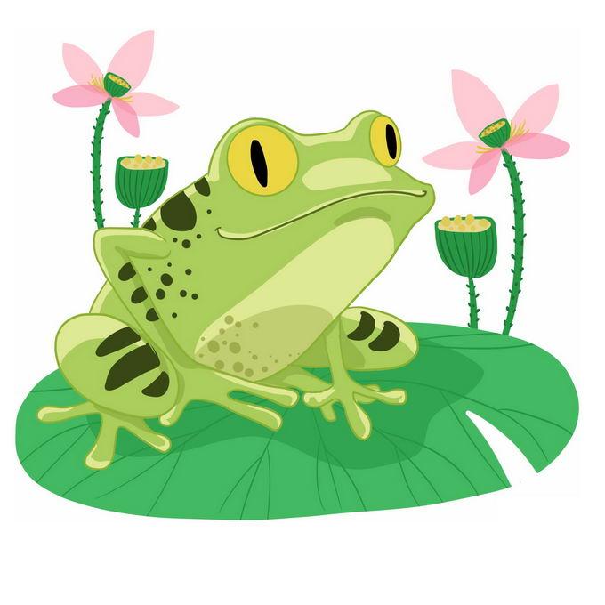 可爱的卡通青蛙趴在荷叶上微笑4704603免抠图片素材 生物自然-第1张