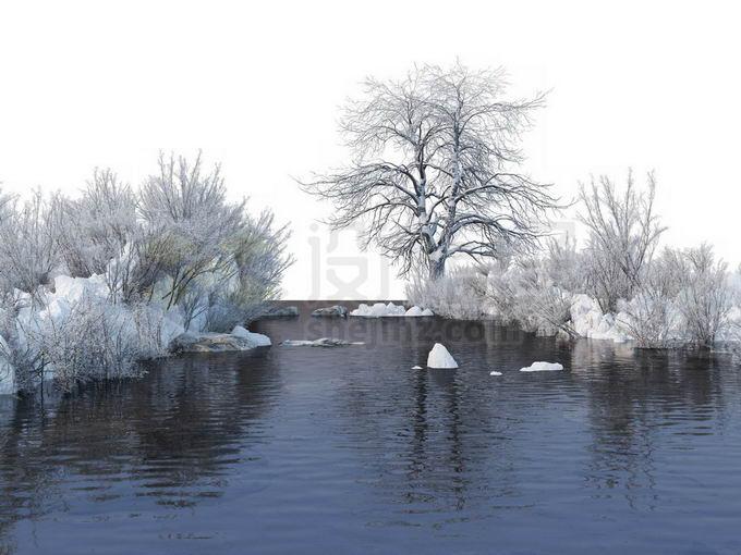 冬天被积雪覆盖的灌木丛和大树以及潺潺流水的小河风景8083135免抠图片素材免费下载 生物自然-第1张